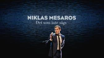 Niklas Mesaros.jpg