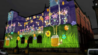Come and Bee part of Bury Light Night!