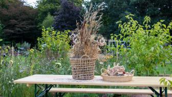 Trädgårdsveckorna
