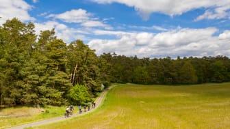 Radtouren in Brandenburg sind sehr beliebt. Foto: TMB-Fotoarchiv/Steffen Lehmann.