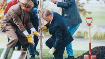 Paal Alme, informasjonsdirektør i Norges forskningsråd, planter et tre sammen  med Gudmund Hernes i forbindelse med Forskningsdagene i 1995. Foto: Morten Ryen/Norges Forskningsråd