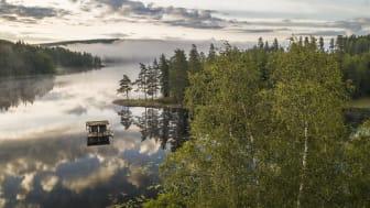 Foto: Martin Edström/imagebank.sweden.se
