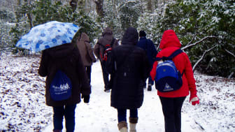 Shed the Christmas calories at a Radcliffe health walk