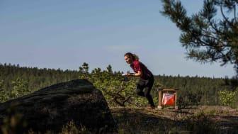 O-Ringen Kolmården 2019 satsar på rekord och nya grepp