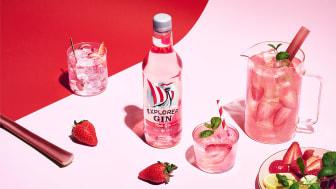 Explorer Pink Gin