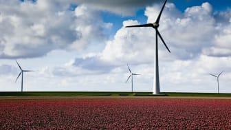 Vind, eller ikke vind – Det er spørsmålet! // Entelios kraftkommentar uke 21. 2021