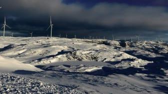 Storheia vindpark, januar 2020