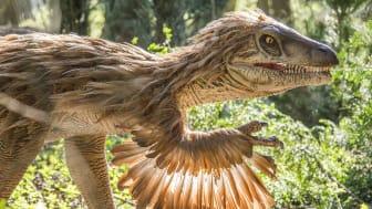 Scandlines gratuliert dem Knuthenborg Safaripark zum neuen Dinosaurier-Wald