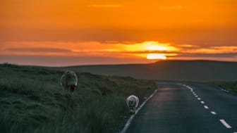Az Isle of Man TT szakasza