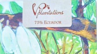 Vintage Plantations 75% by Jenny Berg