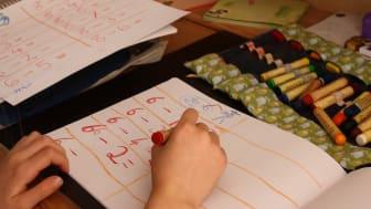 Lernen zuhause (Foto: Christoph Lühl)
