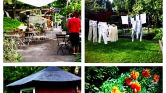 Formex bjuder på sommargrönska i januari
