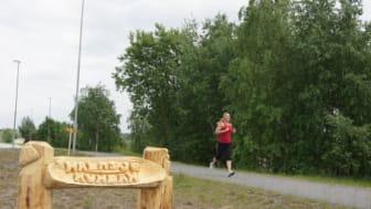 Sällsynta djur och växter lockas till Arlanda, Airport City Stockholm