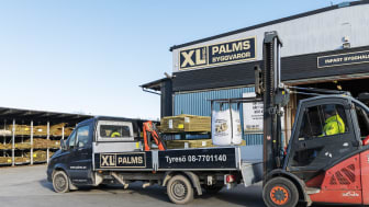 XL-BYGG Palms.jpg