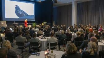 Linda Hammarstrand gjorde en liknelse mellan en koltrast och ett attraktivt företag under Nolia Ledarskap i Umeå.