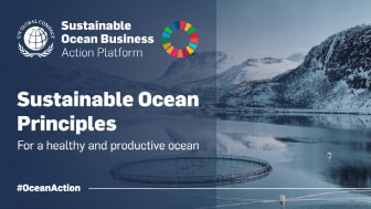 Businesses committing to Sustainable Ocean Principles is one step towards business transformation.