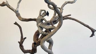 Elin Drougge, Mannlig danser i trærne