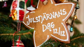 Den 12 december firar vi Julstjärnans Dag. Blomsterfrämjandet har träffat floristen och blomsterinspiratören Karl Fredrik på Eklaholm som ger sina bästa julstjärnetips.