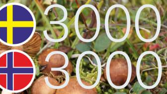 Tretusen arter i vardera land, varav två tusen nya för vetenskapen, har hittats sedan artprojekten i Sverige och Norge startade.