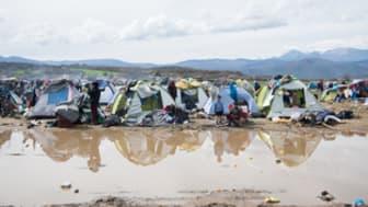 Grekland: Europa måste dela på ansvaret för flyktingarna och migranterna som finns i landet