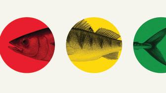Trafikljuset från Fiskguiden. Foto: WWF