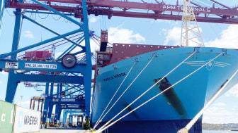 APM Terminals är den enda hamnen i Sverige som kan ta emot världens största fartyg.