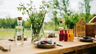 Annorlunda matupplevelser i Skaraborgs natur erbjuds i augusti och september. Foto: Monika Manowska/Turistrådet Västsverige