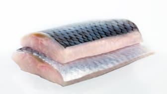 Sildefiletprodukter utgjør nå hoveddelen av sildeeksporten fra Norge.
