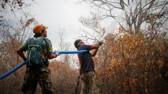 Verdens Skove hjælper de oprindelige folk, især i Bolivia og Honduras med at forebygge og bekæmpe skovbrande