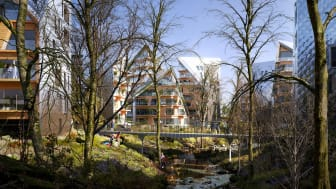 Utopias förslag innehåller bland annat bostadshus längs med Krogabäcken som slingrar sig genom området. Bild: Utopia Arkitekter