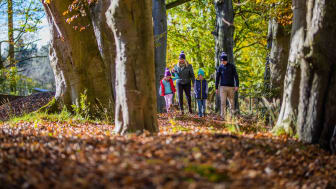 Mid and East Antrim Borough Council's 12 Walks of Christmas series will run throughout December on its social media channels