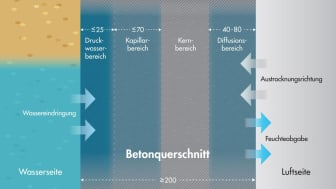 Arbeitsmodell für Feuchtebedingungen in einem Betonbauteil-Querschnitt unter einseitiger Beaufschlagung mit drückendem Wasser (Beton C30/37 (B35 WU)  w/z ≤ 0,55) in Anlehnung an Beddoe/Springenschmid
