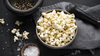 Wildcorn_Popcorn_CannonBall_001