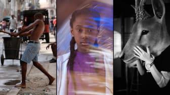 Bilder från filmerna Ghost Town to Havana, The Fits och Oh Deer!
