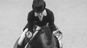 Gothenburg Horse Show 2021 ställs in