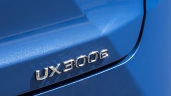 lexus-ux-300e-dpl-008