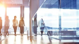 Visma Visionplanner versterkt Connected Experience voor Accountants met overname MLE