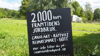 Rättvist - klimatsmart - cirkulärt - gott