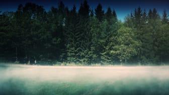 Tjejmilen lanserar #jagspringerför. Vill synliggöra drivkrafterna bakom löpning