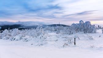 Winterlandschaft auf dem Fichtelberg (Foto: TVE/Bernd März)