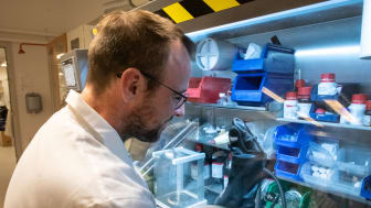 LiU-forskare har utvecklat ny molekyl för att skapa indiumnitrid.