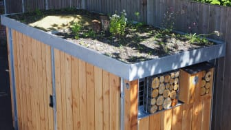 Green Roof bin store at Welwyn North