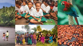 Brother og Cool Earth innledet samarbeidet med å støtte Asháninka-landsbyer i Peru, og arbeider nå også med avsidesliggende samfunn i Papua Ny-Guinea.