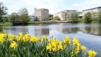 Campus Umeå, Umeå universitet