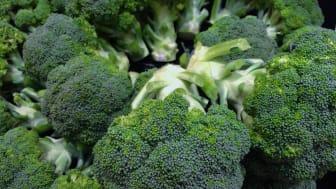 Broccoli skyddar mot diabetes