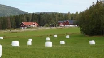 2021-09-09 Webbinarium: Finansiering och riskkapital i svenskt jordbruk