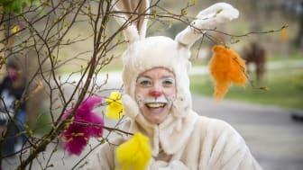 Påskharen har gömt sina ägg och bjuder in till påskäggsjakt