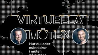 Utbildningen bygger på boken Virtuella Möten