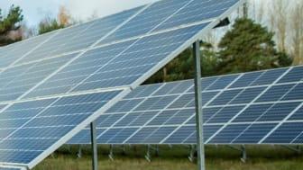 Rekordnivåer för närproducerad grön el i Trelleborg
