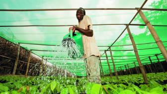 Nestlé water initiative